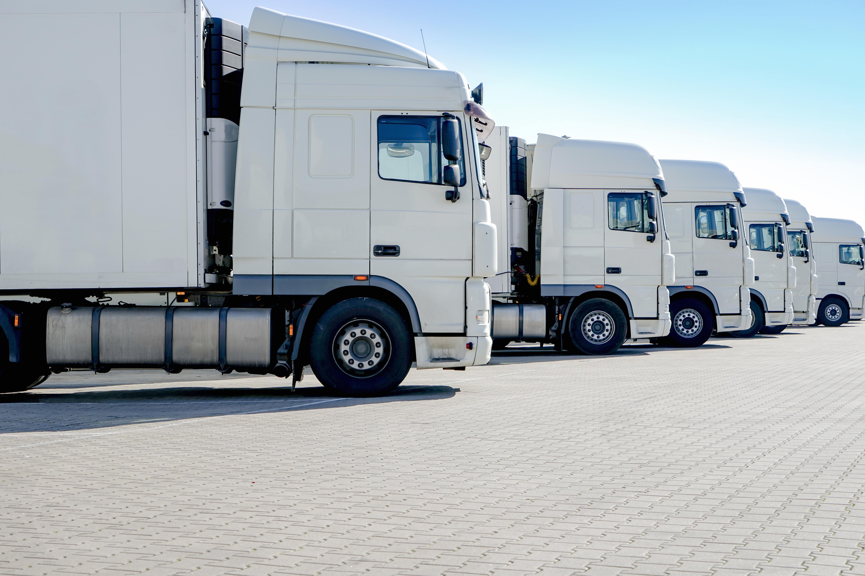 LKW-Spedition, mehrere weie Laster stehen nebeneinander